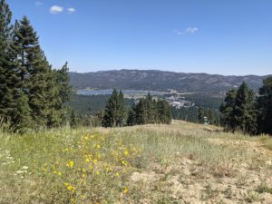 California national forest closure